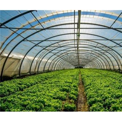"""耕種無憂""""農業生產設施保險"""