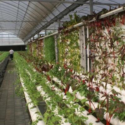 農業休閑觀光服務